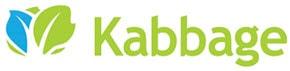 Kabbage Online Lender